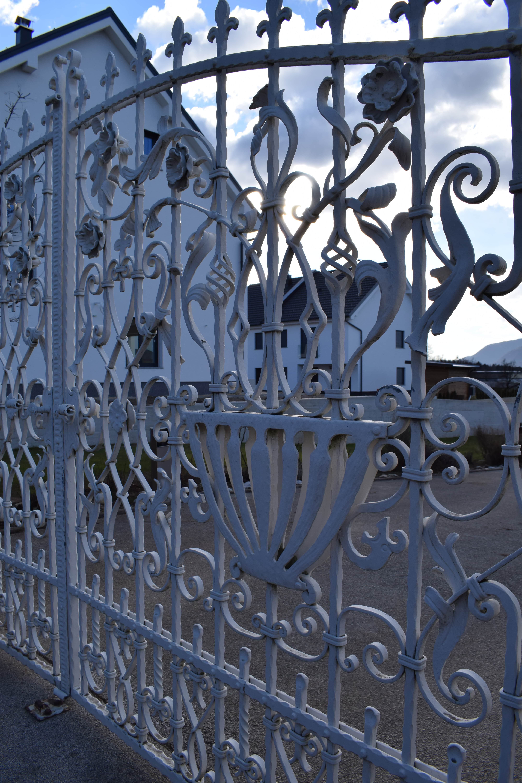 kovana vhodna vrata 1
